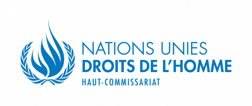 <multi>[fr]Le Haut-Commissaire des Nations Unies aux Droits de l'Homme, Zeid Ra'ad Al Hussein, s'exprime sur la situation en Gambie[en]Comment by the UN High Commissioner for Human Rights Zeid Ra'ad Al Hussein on the situation in The Gambia</multi>
