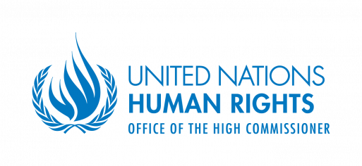 The Gambia : statement of the spokesperson for the UN High Commissioner for Human Rights, Rupert Colville